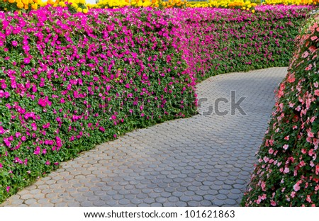 garden path with beautiful pink flowers - stock photo