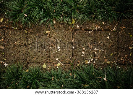 Garden path with grass growing up between the stones background  - stock photo