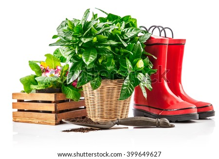 Garden plants in wicker basket from red boots and spade. Isolated on white background - stock photo