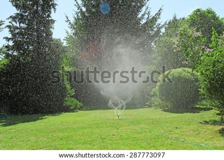 garden sprinkler on a sunny summer day  - stock photo
