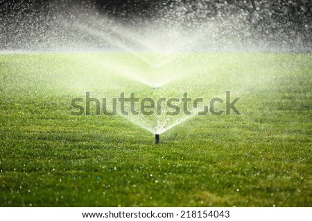 garden sprinkler on a sunny summer day during watering the green lawn - stock photo
