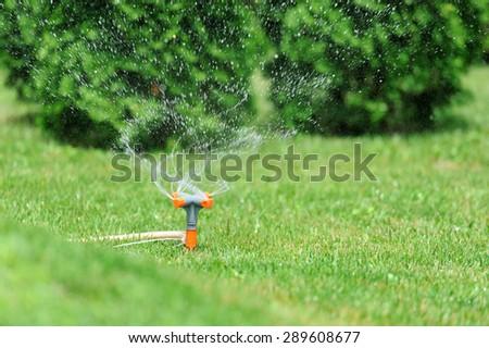 Garden sprinkler working on a green grass lawn - stock photo