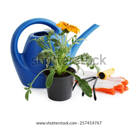 Garden still life on white background, flower, watering can and pitchfork - stock photo
