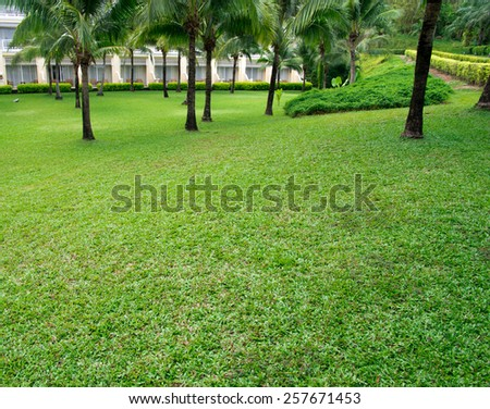 Garden stone path with grass - stock photo