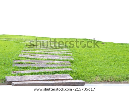Garden stone path with grass growing up between the stones,isolate on empty background - stock photo
