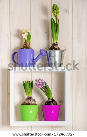 Garden tools and colorful flowers on the shelf - stock photo