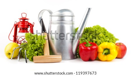 Garden tools and fresh vegetables isolated on white - stock photo