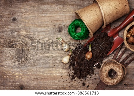 garden tools, peat pots, ground ,   plant the bulbs for planting  on the old wooden background - stock photo