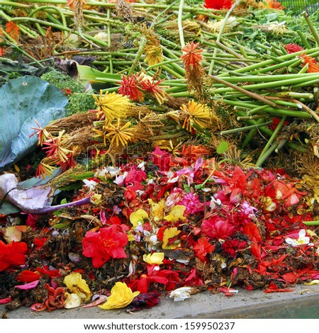 garden waste - stock photo