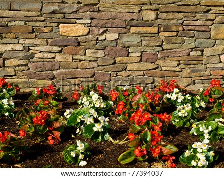Garden with flowers near a wall of rough stone. - stock photo