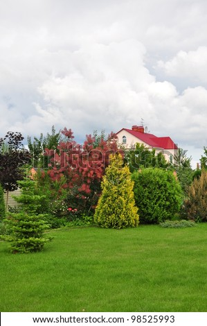 garden with small pine trees in front of a villa house - stock photo
