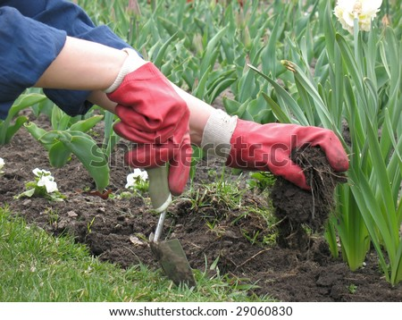 garden worker dig up a flower bed - stock photo