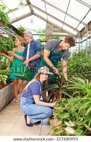 Gardener and florist working in nursery shop on plants - stock photo