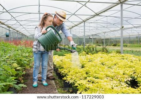 Gardener and granddaughter watering plants in greenhouse - stock photo
