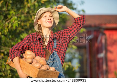 Gardener carrying crate with freshly harvested vegetables in garden - stock photo