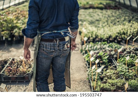 Gardener inside a grreenhouse - stock photo