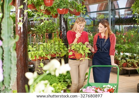 Gardener talking to woman buying a philodendron plant in a nursery shop - stock photo