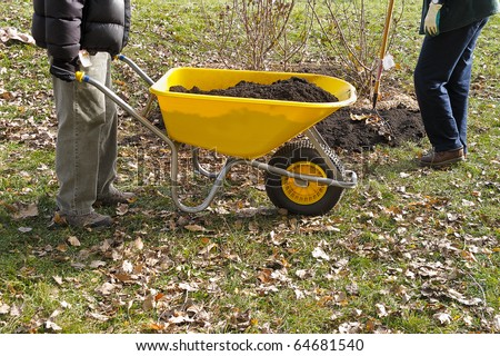 Gardener wheeling wheelbarrow full of soil - stock photo