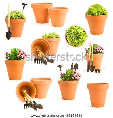 Gardening background. Set of gardening tools and garden flowers - stock photo