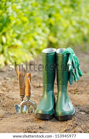 Gardening equipment: tiny spade, rake, gum boots and gloves - stock photo