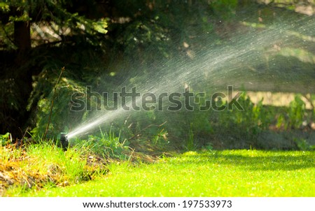 Gardening. Lawn sprinkler spraying water over green grass. Irrigation system - technique of watering in the garden. - stock photo