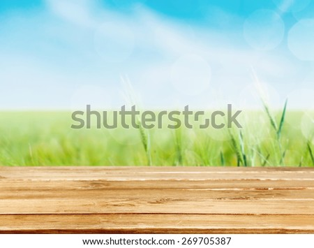 Gardening. Outdoor gardening tools and flowers - stock photo