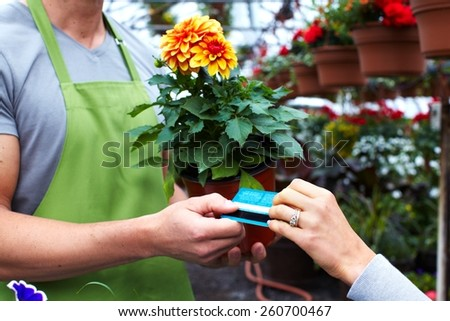Gardening people. Florist working with flowers in greenhouse. - stock photo