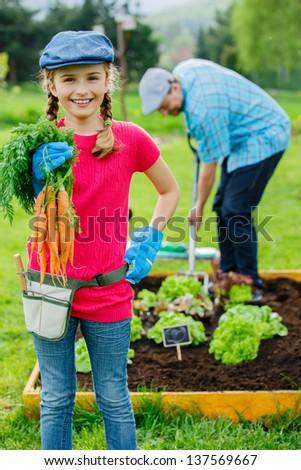 Gardening, planting,cultivation - lovely girl helping in vegetable garden - stock photo