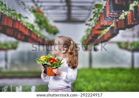 Gardening, planting - Lovely girl holding flowers in garden center. - stock photo