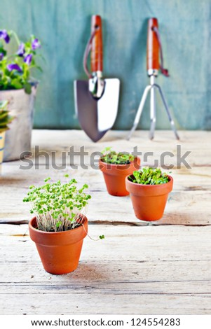 gardening tools - stock photo