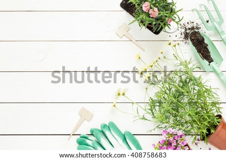 Gardening tools and flowers in pots on white wooden table. Spring in the garden concept background with free text space (top view, flat lay). - stock photo