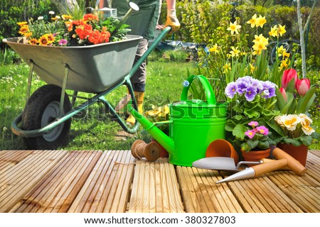 Gardening tools and flowers on the terrace in the garden - stock photo