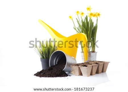 gardening tools and garden flowers isolated on white - stock photo
