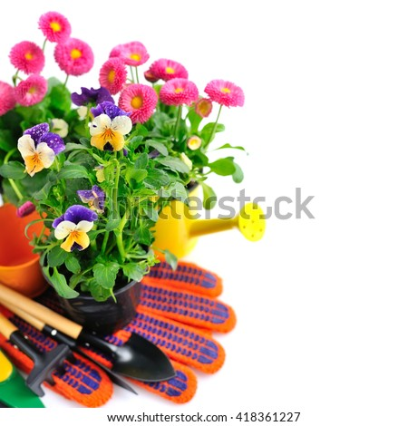 Gardening tools and spring flowers on a white background - stock photo