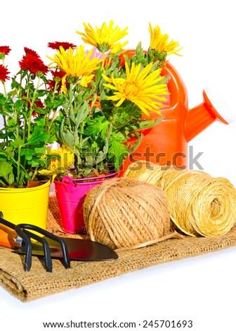 Gardening tools, flowerpot with oaklings flowers on the sacking isolated on white - stock photo