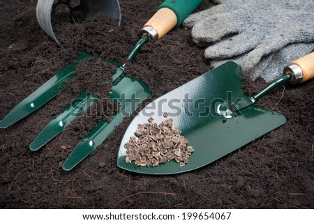 gardening tools on black soil - stock photo