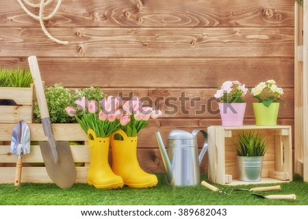Gardening tools on the grass in the backyard. Fresh flowers and plants in the spring. - stock photo