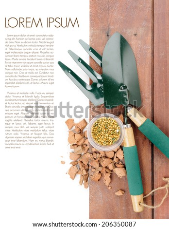 gardening tools on wooden plank background - stock photo
