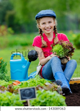 Gardening - young girl with lettuce in vegetable garden - stock photo