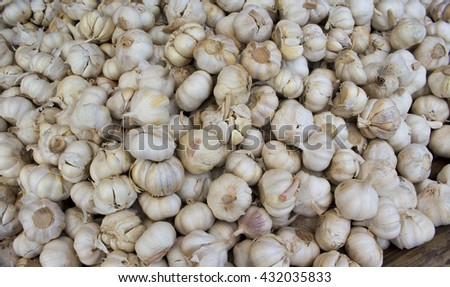 Garlic pile for background, garlic mound on market, bunch of garlic from garden, garlic harvested, underground vegetable garlic, drying garlic, health care vegetable garlic, raw spice garlic heap  - stock photo