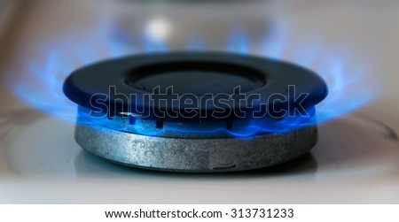 Gas burning on the stove - stock photo