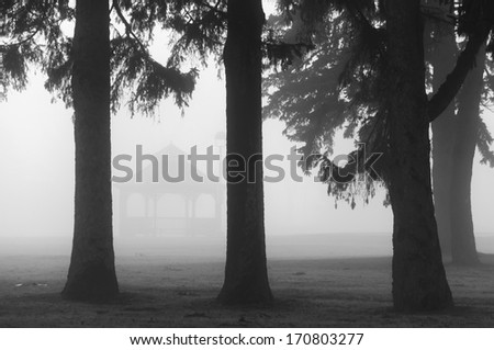 Gazebo and trees in foggy morning in park. Black and white monochrome image. - stock photo