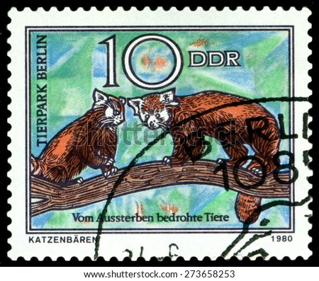 GDR - CIRCA 1980: A stamp printed in  GDR,  shows  Wild cats, series  Zoo, Berlin, circa 1980 - stock photo