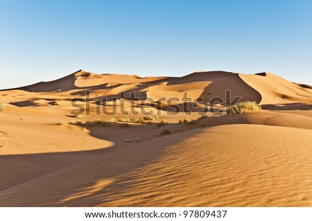 General view of Erg Chebbi oranges sand dunes at Morocco - stock photo