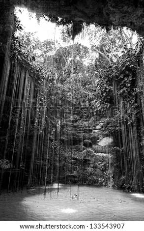General view of the Ik-Kil cenote near Chichen Itza, Mexico (black and white) - stock photo