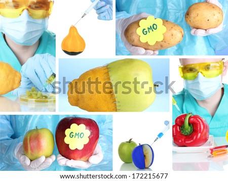 Genetic engineering laboratory. GMO food concept - stock photo
