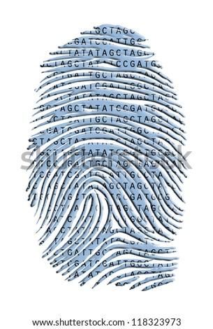 Genetic Latter Finger Print Isolated on White - stock photo