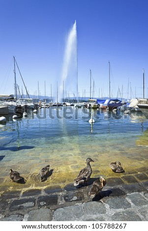 GENEVA-JULY 25: Yacht harbor with ducks on the foreground at Lake Geneva in Geneva, Switzerland on July 25, 2011. According a survey by Mercer Geneva has the third-highest quality of life of any city in the world. - stock photo
