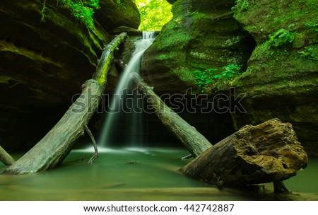 Gentle cascade flowing over fallen trees.  Kaskaskia Canyon, Starved Rock, Illinois. - stock photo