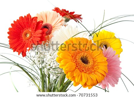 Gerbara daisy bouquet over white background - stock photo